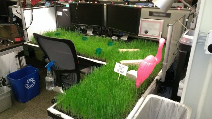 Funny-office-prank-idea-grass-desk
